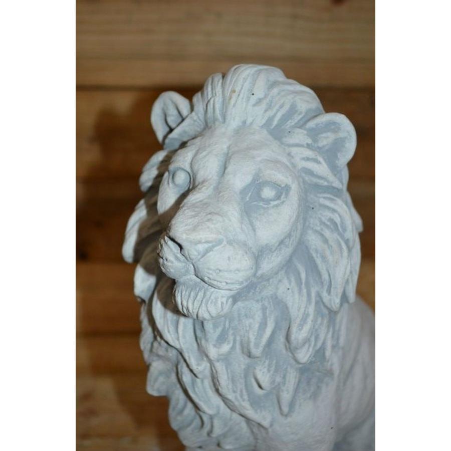 Leeuw  zittend-4