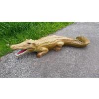 thumb-krokodil, Alligator of kaaiman-1