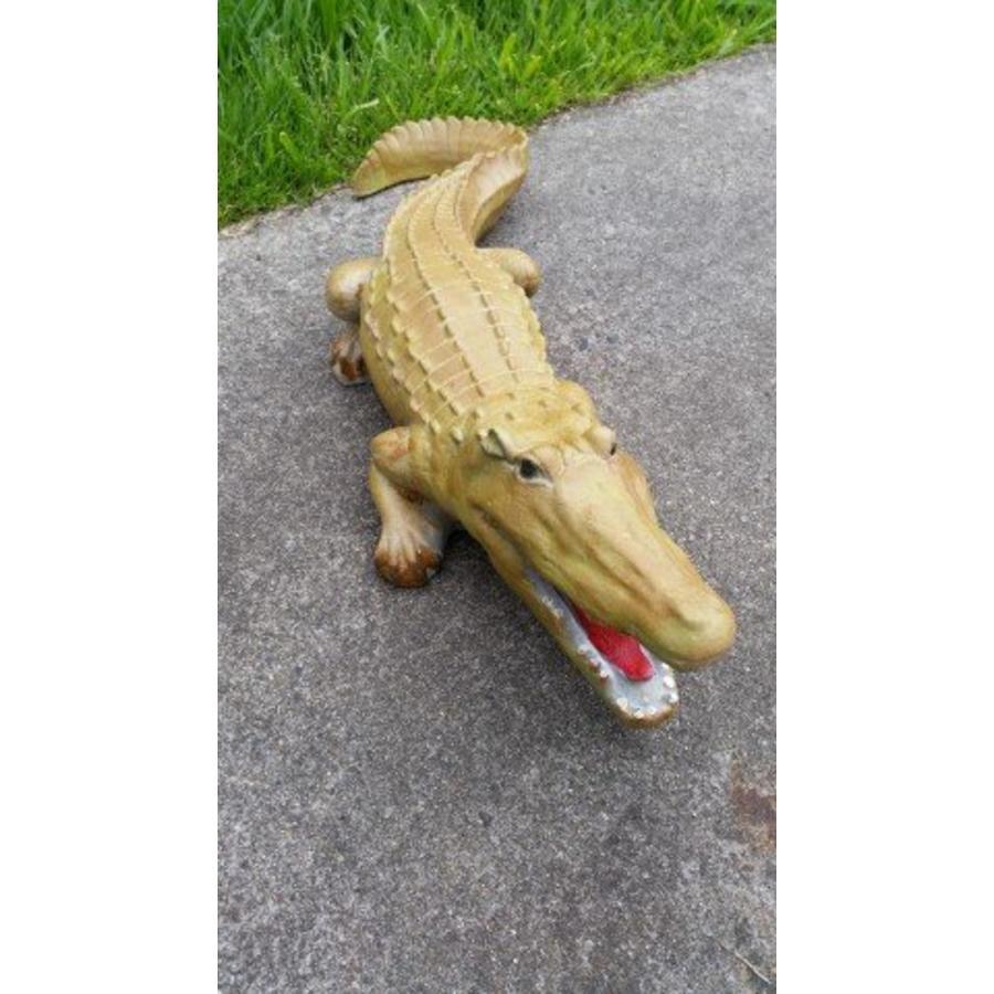 krokodil, Alligator of kaaiman-2