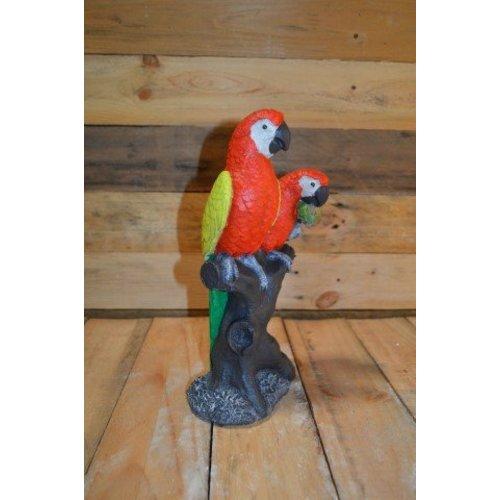 2 papegaaien op boom