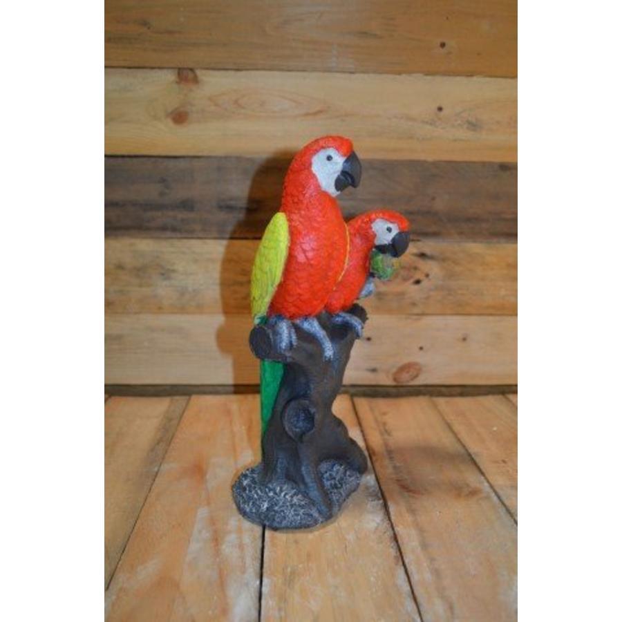2 papegaaien op boom-1