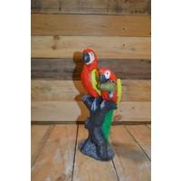 thumb-2 papegaaien op boom-2