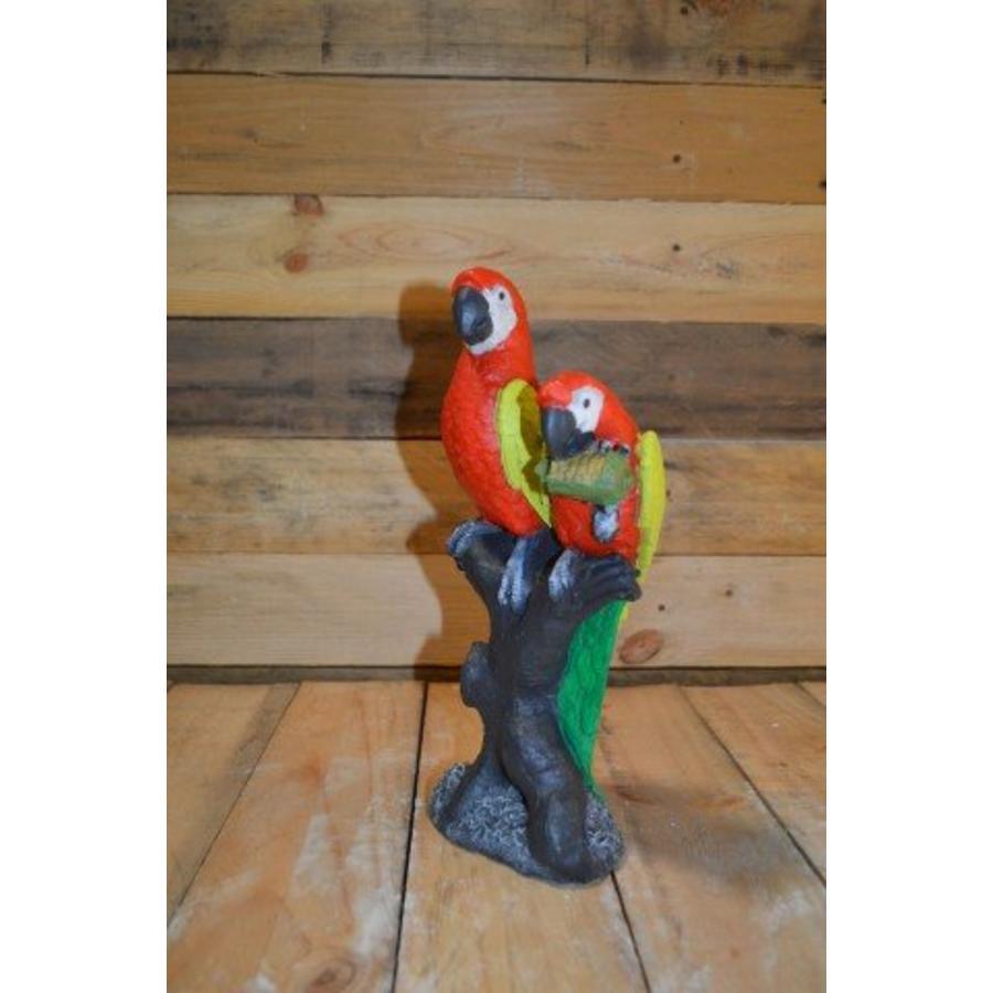 2 papegaaien op boom-2
