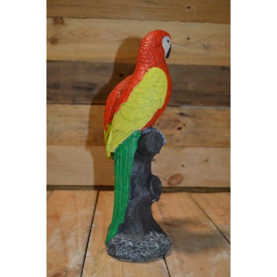 2 papegaaien op boom-4