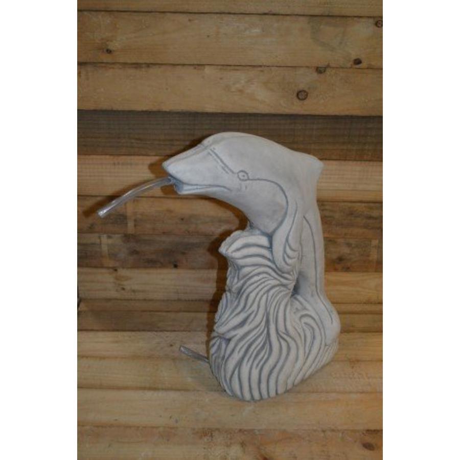 Dolfijn met slang-1