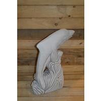 thumb-Dolfijn met slang-3