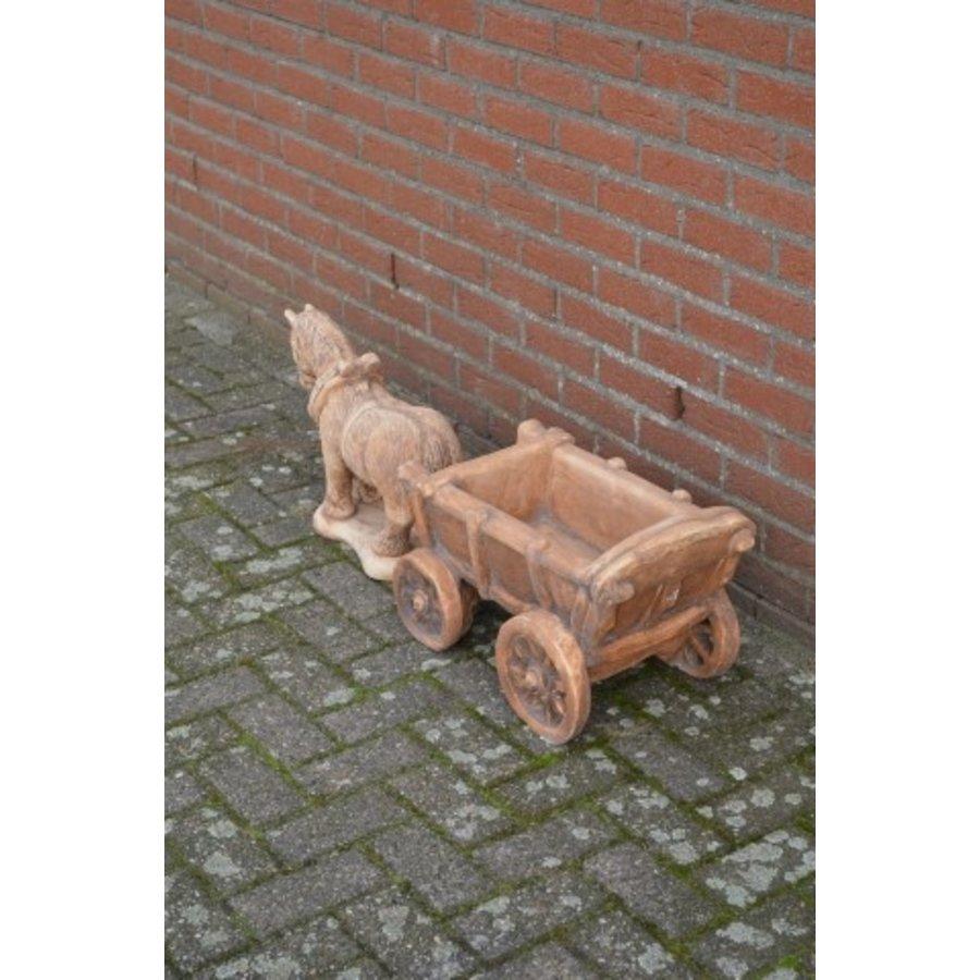 Belgisch trekpaard met kar-3