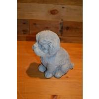 thumb-Hond Maltezer leeuwtje pup-1
