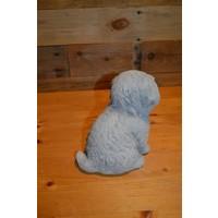 thumb-Hond Maltezer leeuwtje pup-3