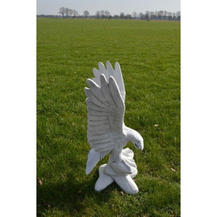 Arend met de vleugels omhoog-1