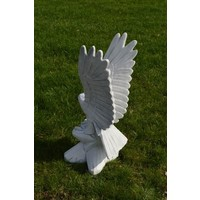 thumb-Arend met de vleugels omhoog-3