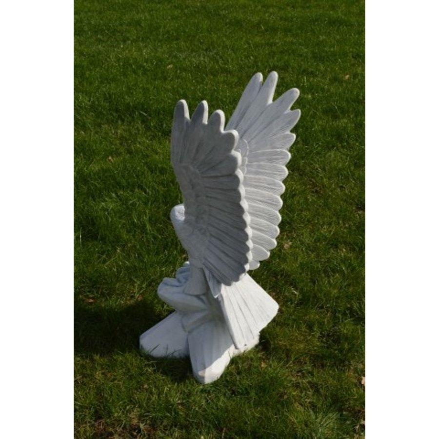 Arend met de vleugels omhoog-3