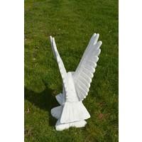 thumb-Arend met de vleugels omhoog-4