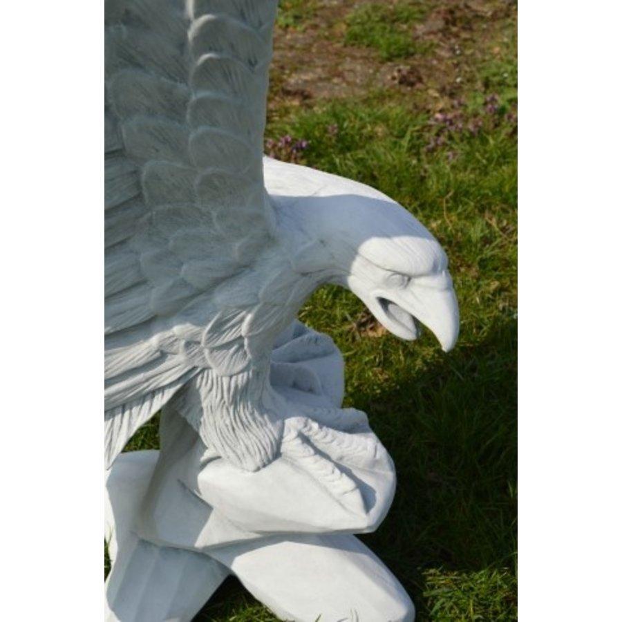 Arend met de vleugels omhoog-5