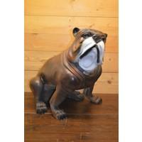 thumb-Bulldog-1