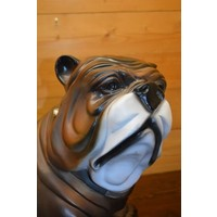 thumb-Bulldog-5