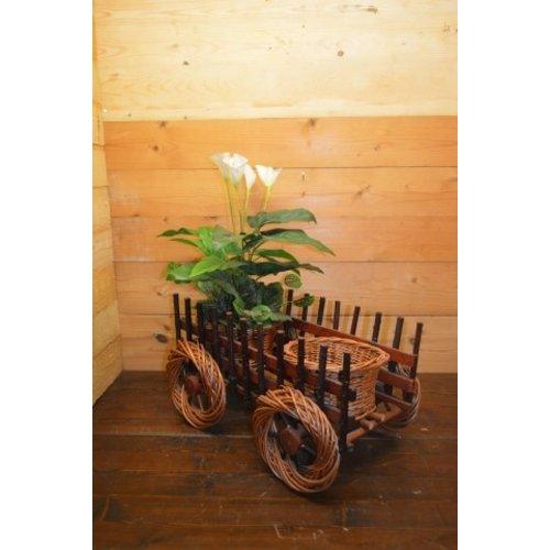 Karretje met 2 plantenmandjes