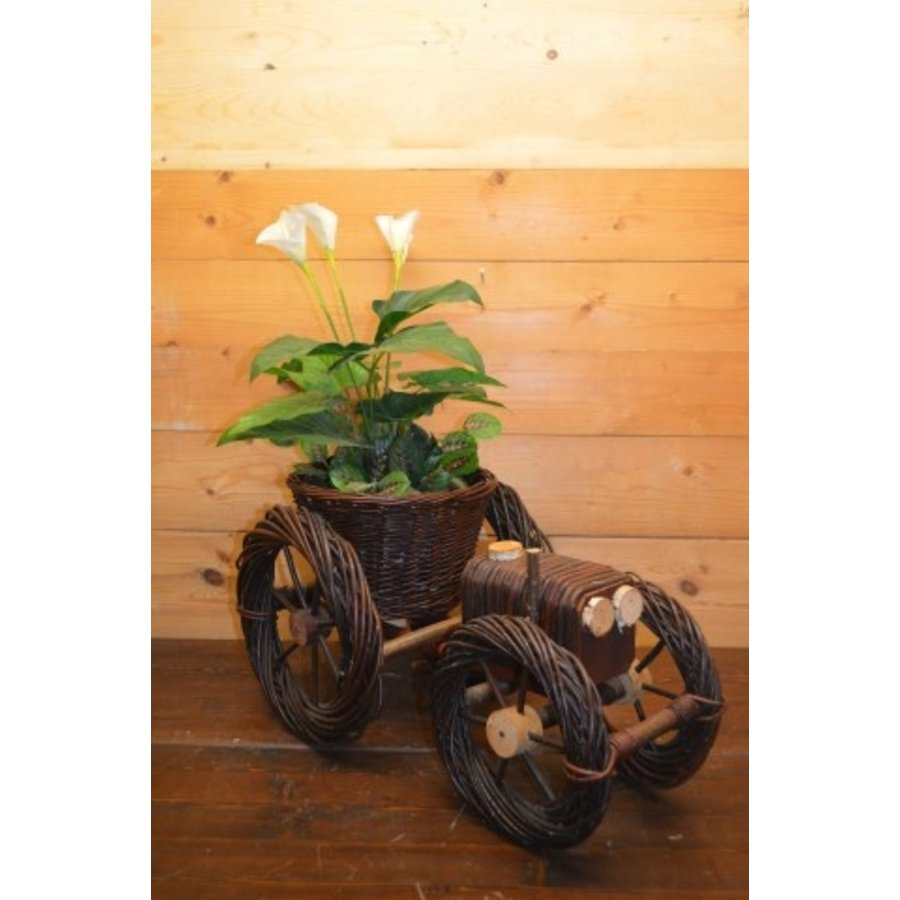 Trekker groot  met mandje voor een plantje-1