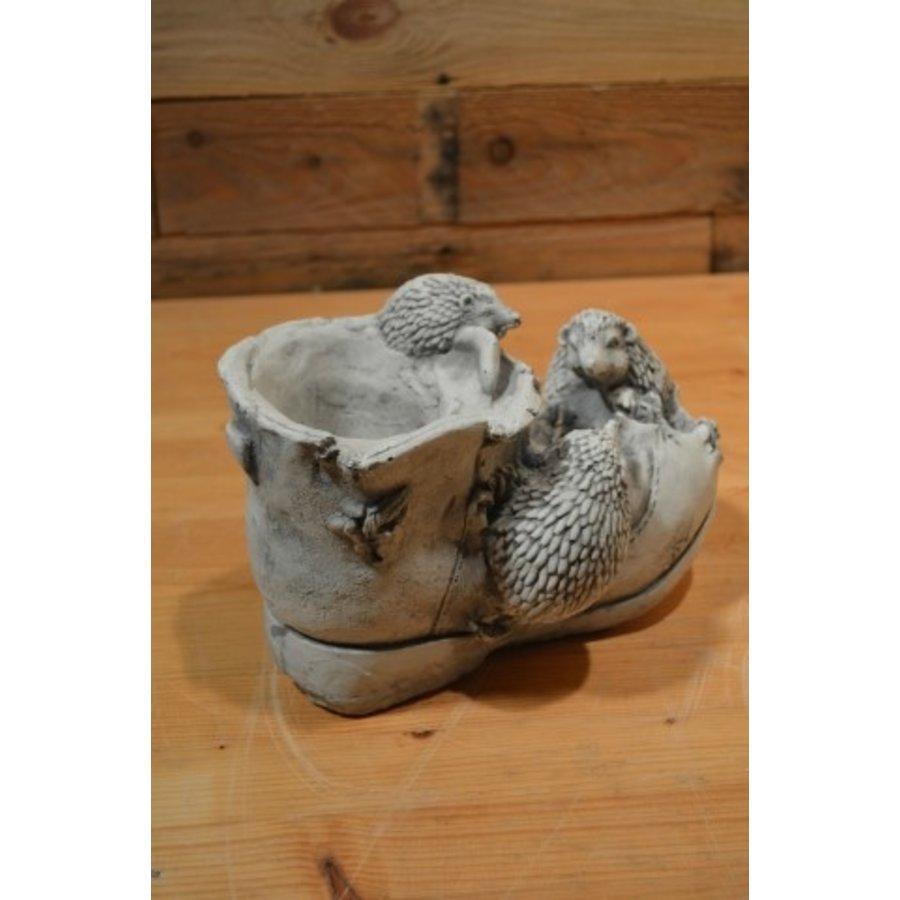 Egeltjes op een schoen-2