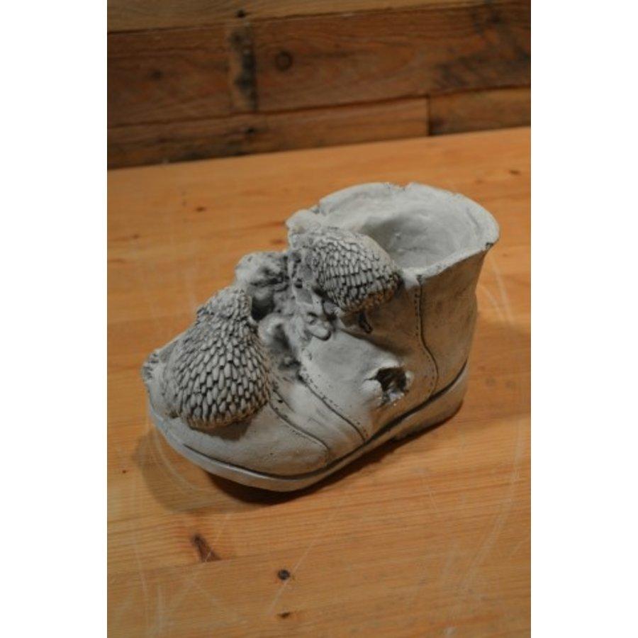 Egeltjes op een schoen-4