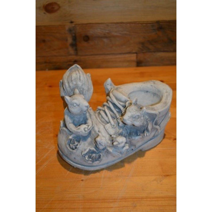 Eekhoorntjes op een schoen-1