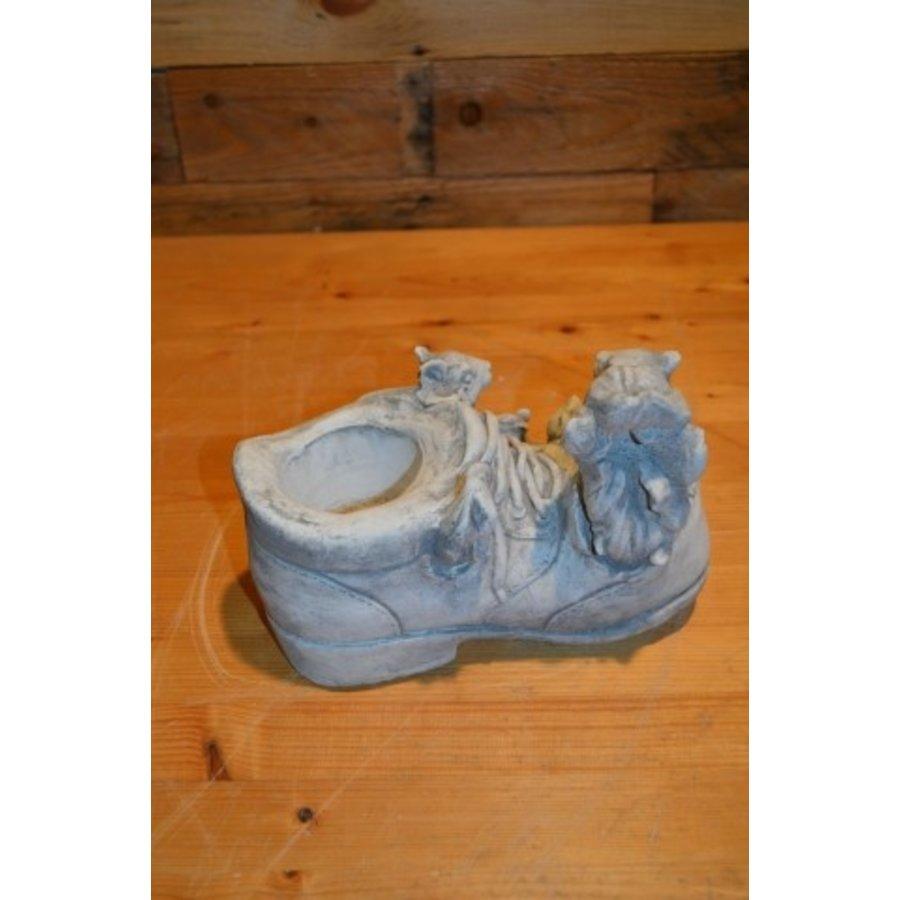 Eekhoorntjes op een schoen-3