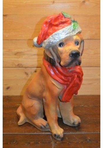 Kerst labrador