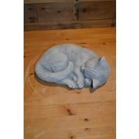thumb-Slapende kat-2