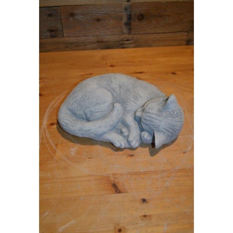 Slapende kat-2