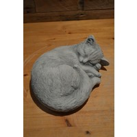 thumb-Slapende kat-1