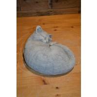 thumb-Slapende kat-3