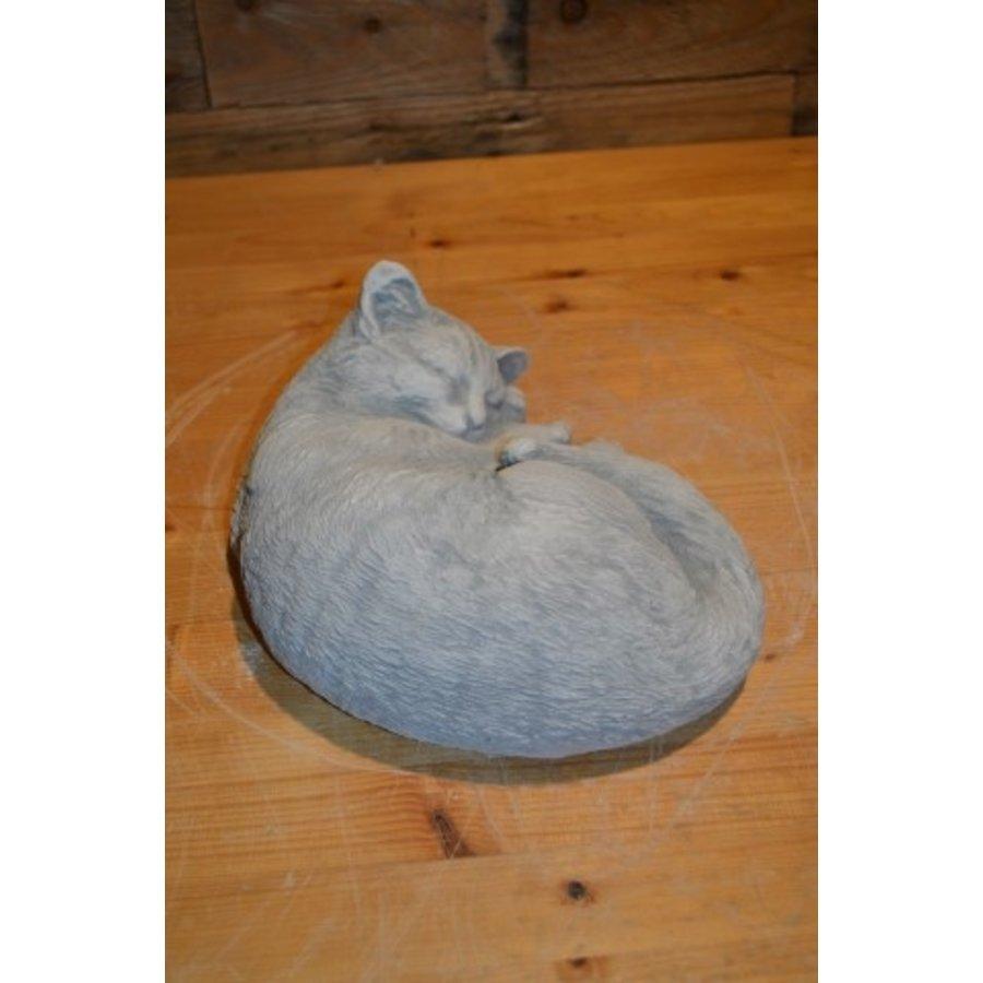 Slapende kat-3