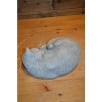 thumb-Slapende kat-4