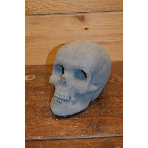 Schedel decoratie hoofd