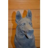 thumb-Zittende herder hond-4
