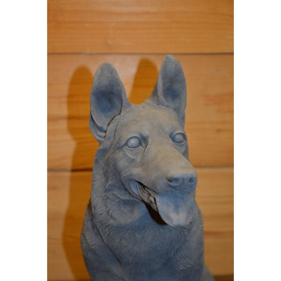 Zittende herder hond-4