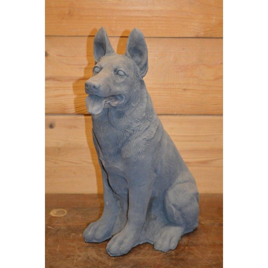 Zittende herder hond-5