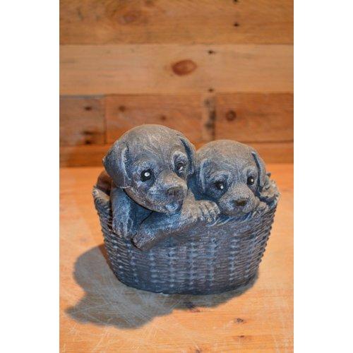 2 hondjes (puppy's) in een mand stone kleur