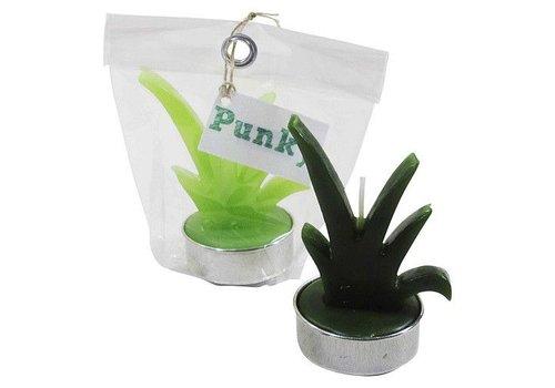 Kanika Cactus kaars Punky