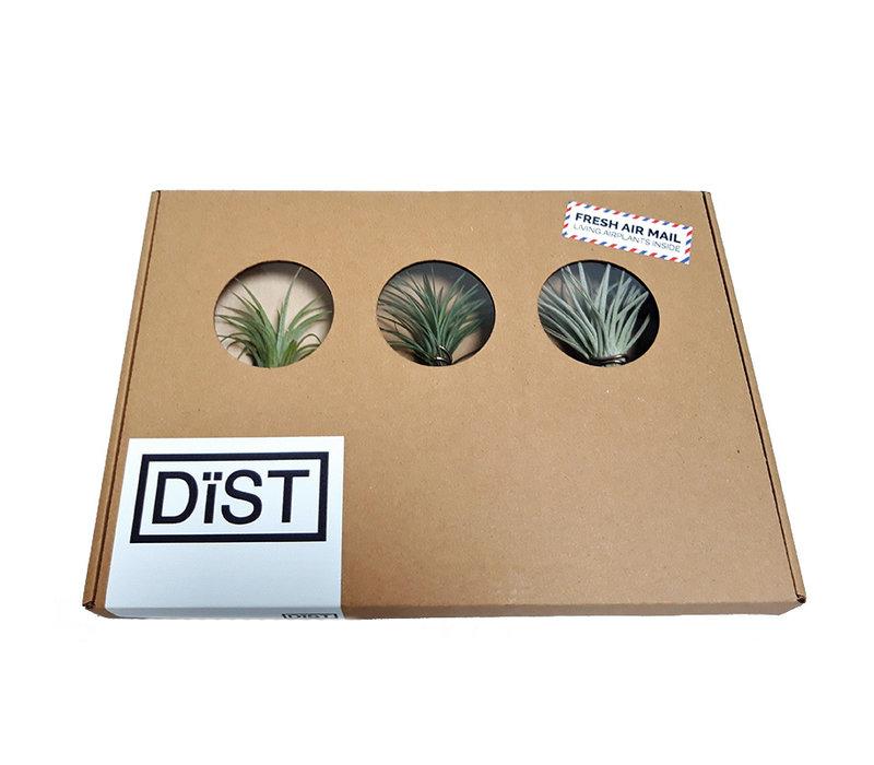 Dist Airmail