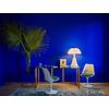 Ressource Verf voor wanden en houten ondergrond in Yves Klein Blue