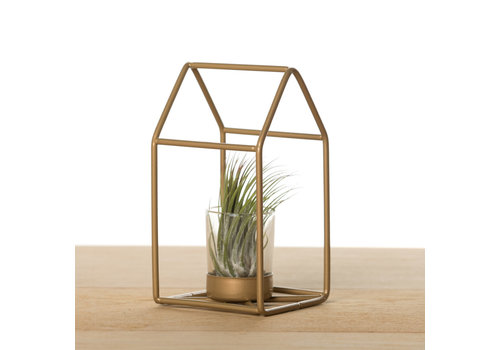 Airplants Metalen huisje met airplant