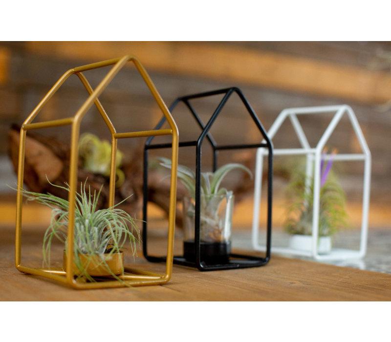 Metalen huisje met airplant
