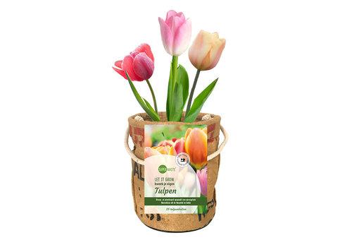 Superwaste Kweekpot tulpenbollen