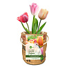 Superwaste Kweekpot tulpenbollen - large
