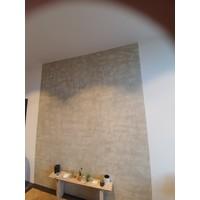 Ressource Peintures Vieux Murs