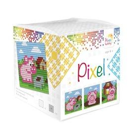 Pixel Hobby Pixel kubus  Biggetjes