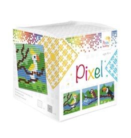 Pixel Hobby Pixel kubus  Tropische vogels