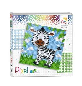 Pixel set  Zebra