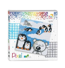 Pixel set  Pooldieren